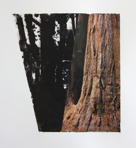 """Trees, 20 x 15"""", Xerox Transfer and Collage on Paper, 2012"""